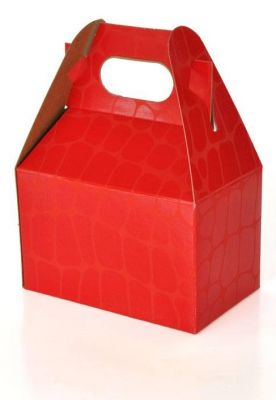 Gable Box Small | Red Croc