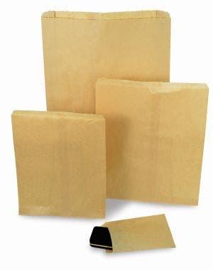 Plain kraft notion bags  gal large