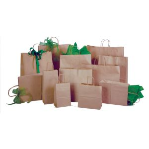 100% Recycled Kraft Paper Shopping Bags | Twisted Paper Handles